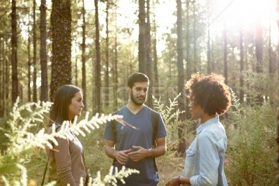 Friends talking in the pine forest
