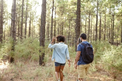 Friends walking a pine forest trail