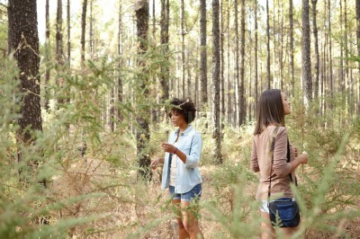 Girlfriends exploring the pine tree forest