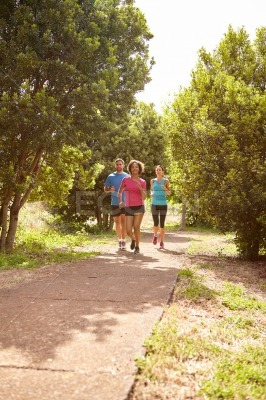 Joggers on a paved running trail