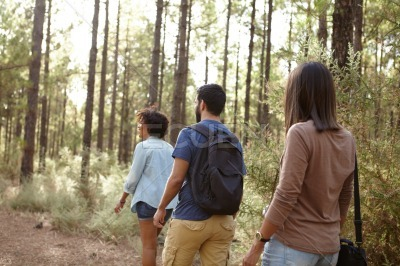 Three friends hiking in a forest