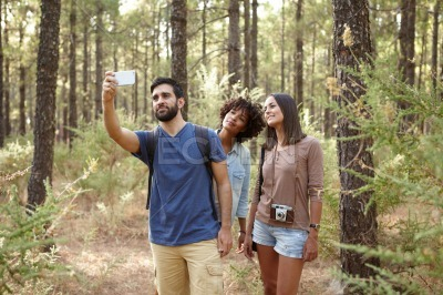 Three friends taking pine forest pictures