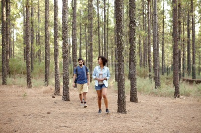 Young couple in a pne plantation