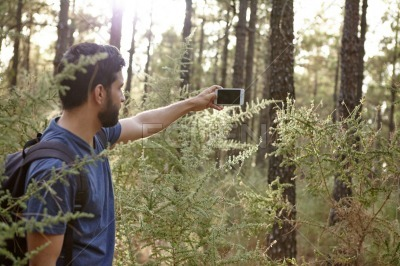 Young man taking pictures in a forest