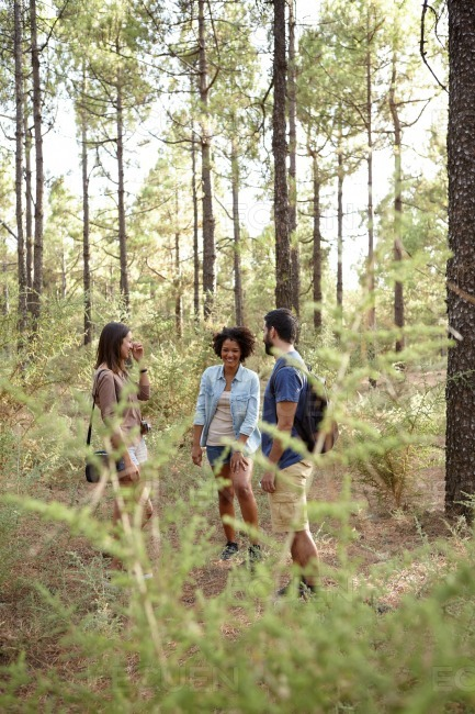 Friends having fun in a forest stock photo