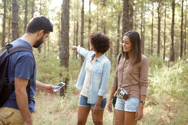 Friends in a forest with a cellphone stock photo