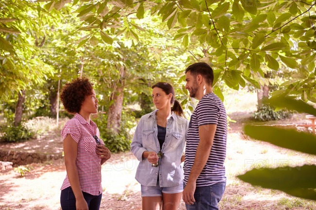 Three young friends having a discussion stock photo