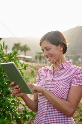 Farm girl looking at a tablet