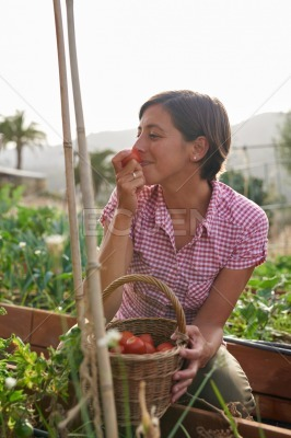 Pretty farmer with basket of tomatoes