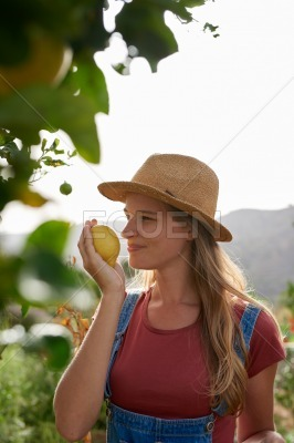 Smiling young woman smelling a lemon