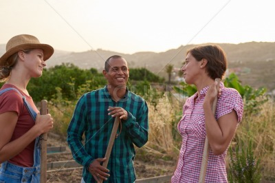 Three young vegetable farmers chatting happily