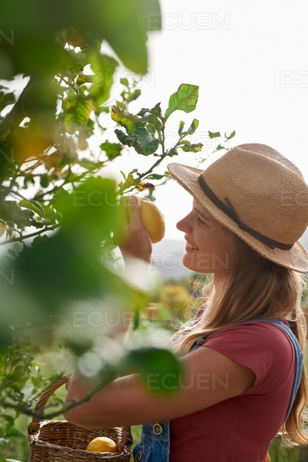 Girl with hat smelling a lemon stock photo