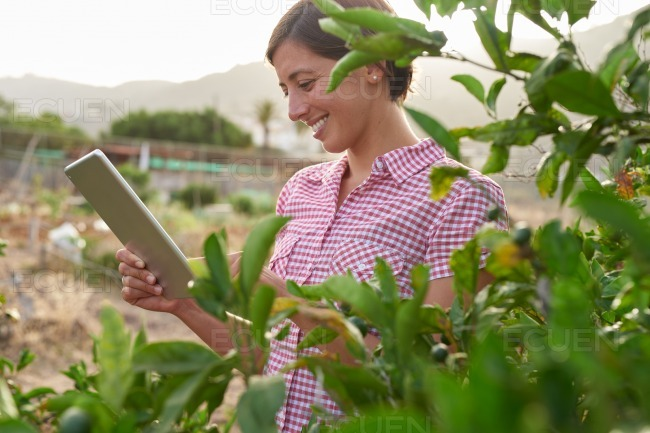 Girl with tablet pc on farm