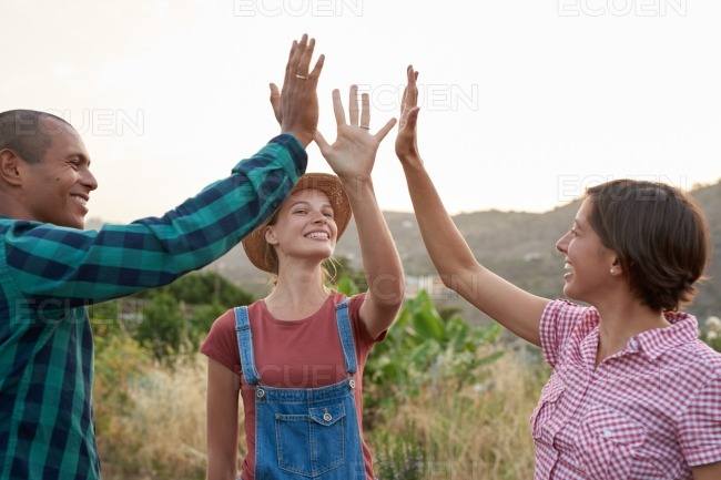 Three friends giving the high five stock photo