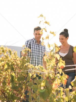 A young man and woman standing in the winelands