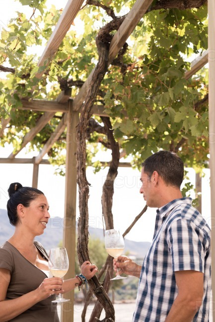 A man and woman standing under a vine canopy