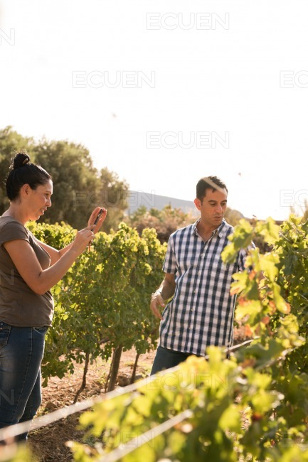 Two people enjoying themselves in the vineyard