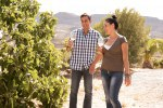Couple walking and talking in a vineyard