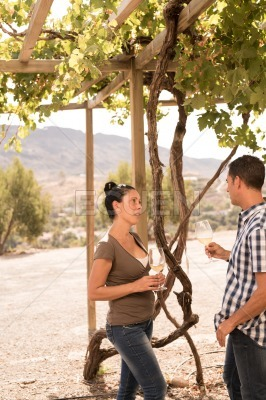 Couple talking to each other in a vineyard