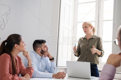 Group of executives having a meeting