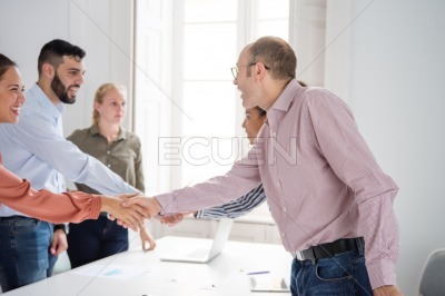 Business team shaking hands in an office