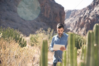 Man standing next to a cactus looking down