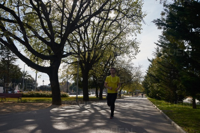 Man running on a tree lined road