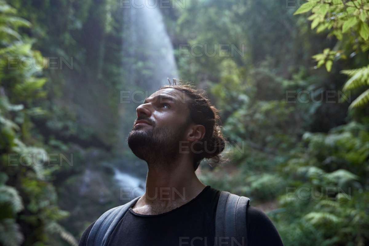 Young man looking at the sky from the trees below stock photo