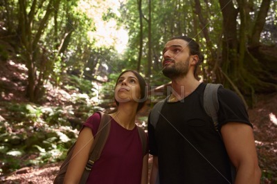 Couple looking up at the tree line of a forest