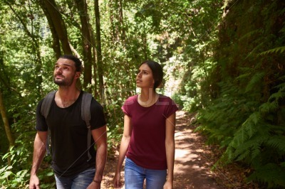 Man and woman walk along a tree lined path