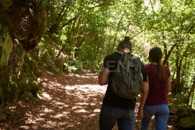 Rear view of a couple walking down a path
