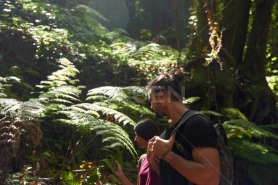 Young couple looking at the large fern leaves
