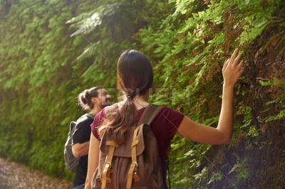 Young woman with a raised hand touches the leaves